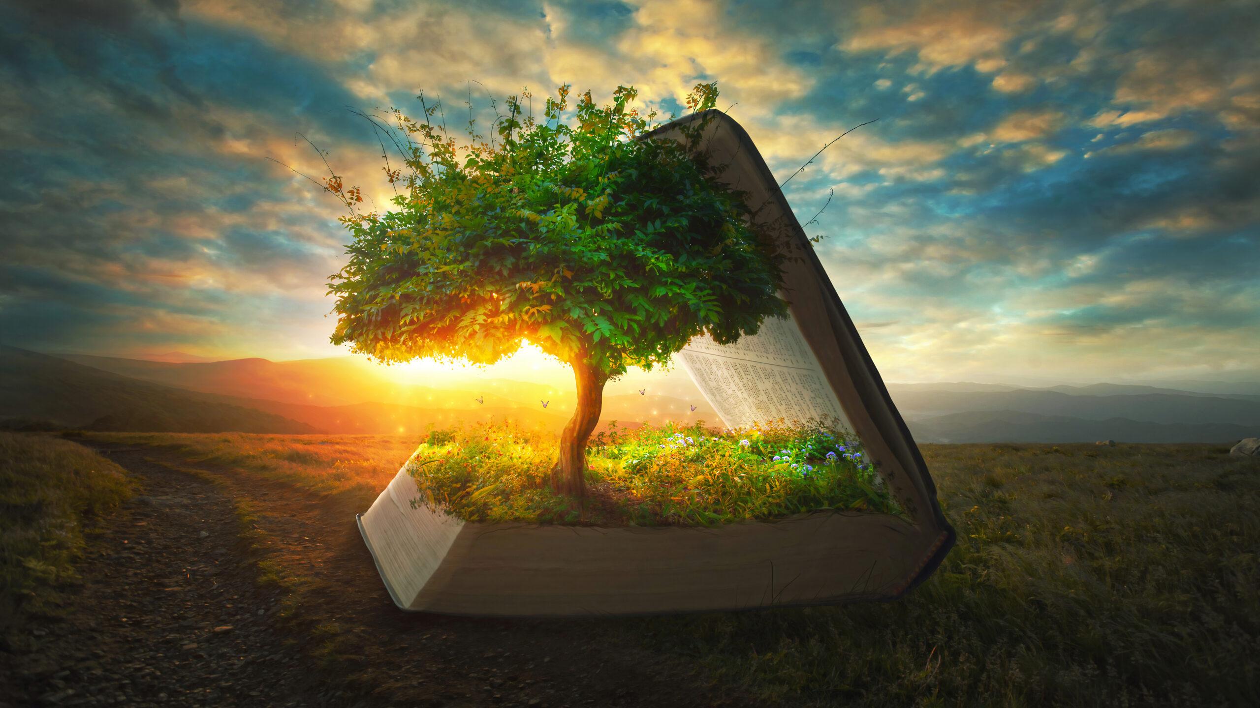 Theologischer Knigge: Regeln für den Wertepark